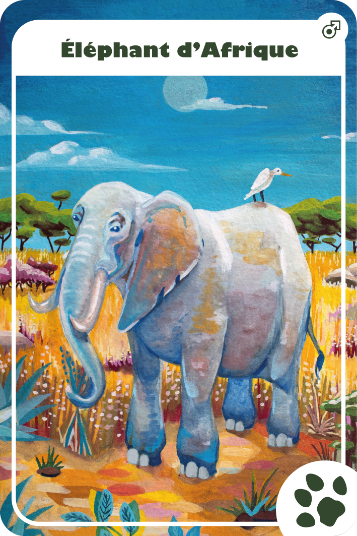 illustration gouache Elephant