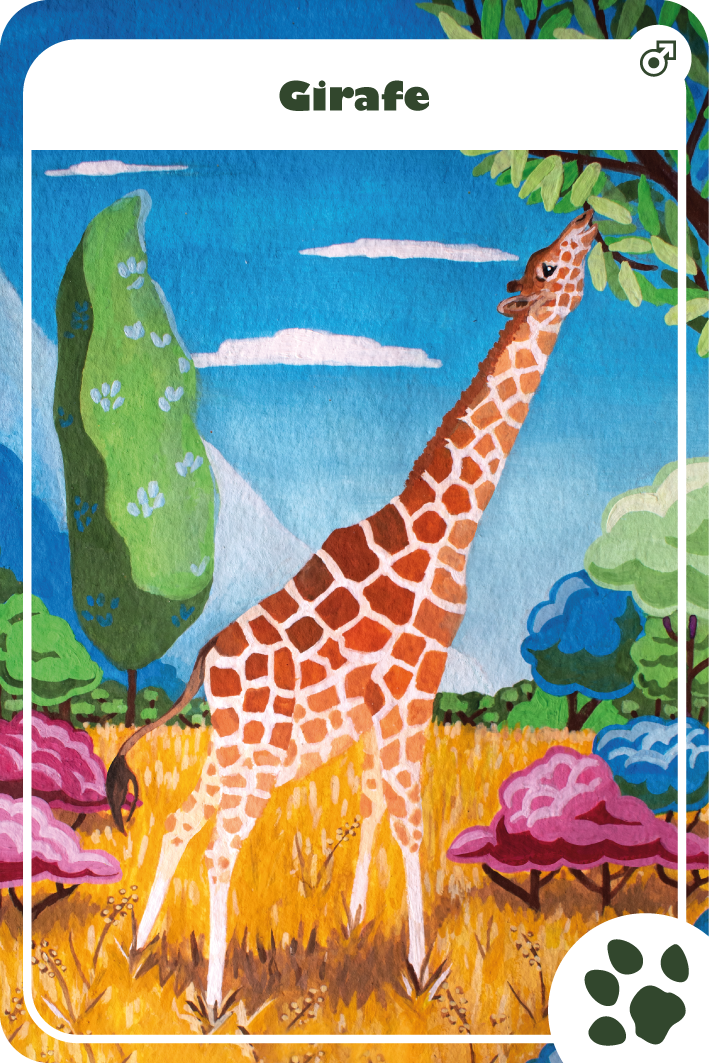 illustration gouache girafe