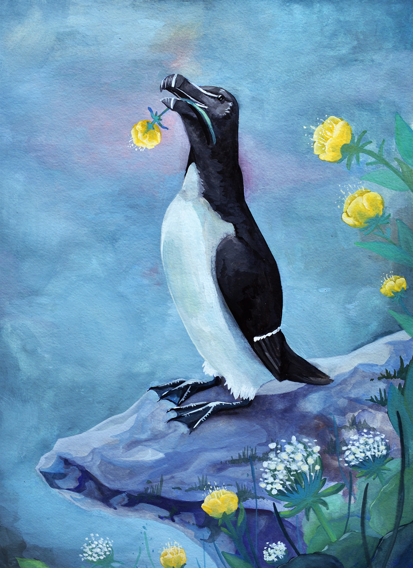 gouache pingouin